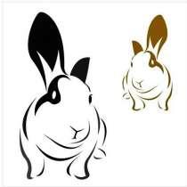 Продаю кроликов калифорнийской породы, в Сафоново