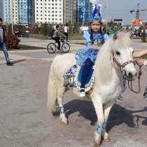 Пони в Алматы, в г.Алматы