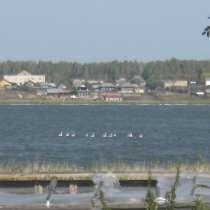 Участки в Д/П Рублево рядом с озером Анжелы, в Екатеринбурге