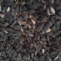 Семена подсолнечника, в г.Павлодар