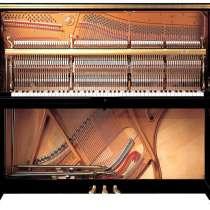 Фортепианный мастер (настройщик пианино), в Кемерове