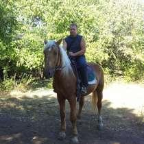 Дмитрий, 39 лет, хочет познакомиться, в Ростове-на-Дону