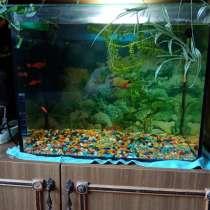Продам аквариум, в Костроме