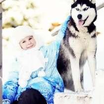 Чудные малыши Сибирской Хаски. разных окрасов, в Уфе