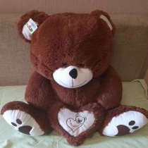 Медведи, в Тольятти