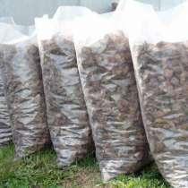 Мульча кора сосны / лиственницы 60 литров 350 руб, в Смоленске