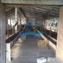 Ферма в Грачевском районе, в Ставрополе
