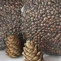 Кедровый орех в скорлупе, в Томске
