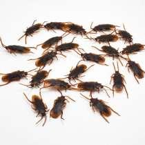 Чем травить клопов, в квартире завелись тараканы, в г.Бендеры