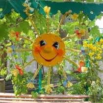 Солнышко с косичками №2, в Тольятти