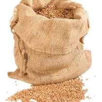 Пшеница продовольственная 3\4-й класс, в г.Минск