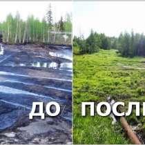 Инновации рекультивации нефтезагрязненных земель и водоемов, в Краснодаре