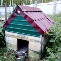Будка для собаки, в Нижнем Новгороде