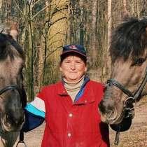 Верховая езда детям и взрослым, в Москве