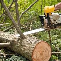 Спил, вырубка деревьев. Вывоз. Корчевание, в Новосибирске