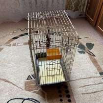 Клетка для попугая, в Владимире