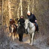 Конные прогулки, катание на экипаже и санях, в Мытищи