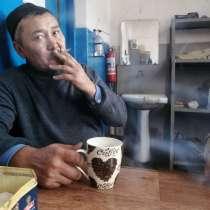 Собака питбул, в г.Астана