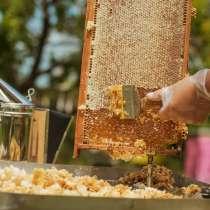 Забрус пчелиный, в Тарусе