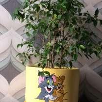 Горшок цветочный, в Москве