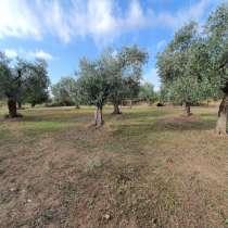 Земельный участок в районе Лименарии на острове Тасос, в г.Thasos