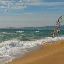 Отдых в Крыму. Береговое. Золотой пляж, в Феодосии