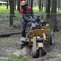 удаление опасных аварийных деревьев - кронирование - санитар, в Москве