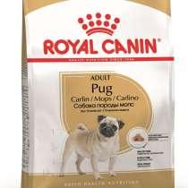 Корм сухой Royal Canin Pug Adult, в Москве