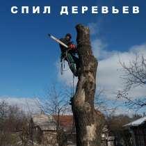 Спил Деревьев любой сложности!, в г.Луганск