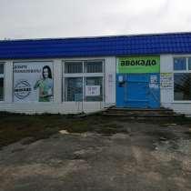 Для бизнеса или как жилой дом, в Саранске