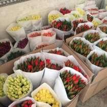 Цветы в горшках, в Москве