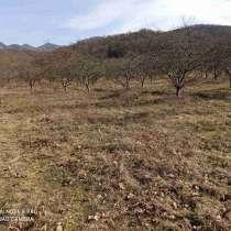 Продаётся земельный участок 150 соток в 20 км от Туапсе, в Туапсе