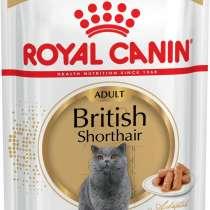 """Консервы Royal Canin """"British Shorthair Adult"""", для кошек бр, в Москве"""