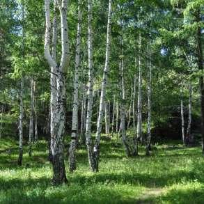 Земельный участок, 450 сот. под усадьбу, лес, озеро, соседи, в Екатеринбурге