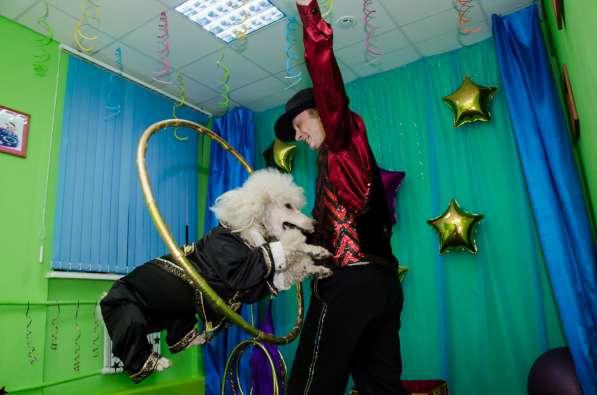 Дрессированные животные на детский праздник в Москве фото 3