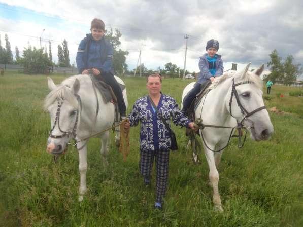 Прогулки на лошадях в Воронеже фото 7