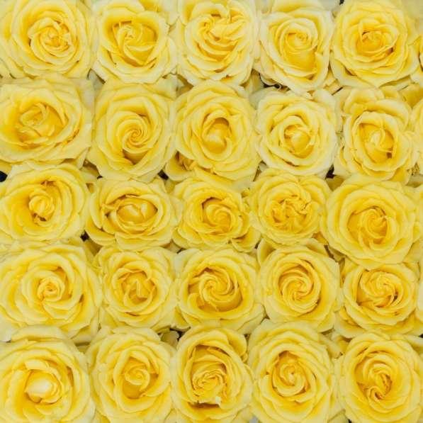 Цветы напрямую от плантаций Эквадора от 1 коробки в Москве фото 10
