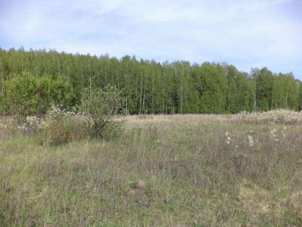 Продается земельный участок 9,5 соток в СНТ « сюково», Можайский р-он,120 км от МКАД по Минскому шоссе