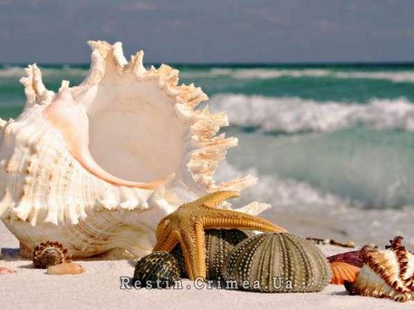 Маевка у моря к 1 Мая 2016