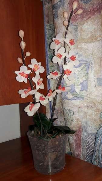 Орхидеи из холодного фарфора в фото 3