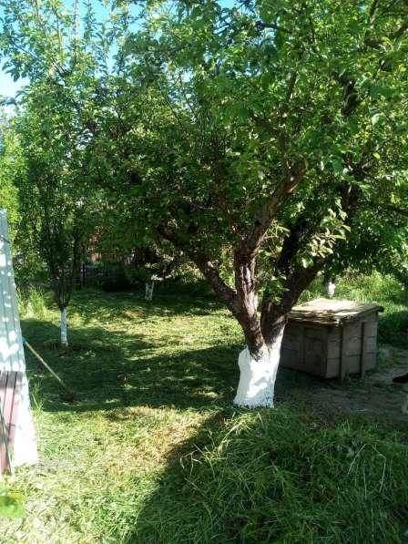 Продаю или меняю дачу в Краснодаре на дом во Владимире в Краснодаре фото 12