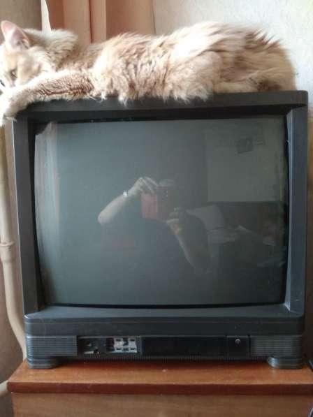 просто телевизор вальтхам фото ставятся разных