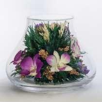 Орхидеи фиолетовые тёмные, в Москве