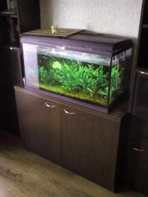 Продам аквариум 150л с тумбой, в Саратове