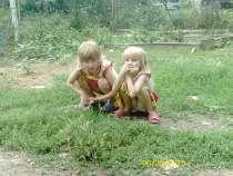 Помогите многодетной семье, в г.Симферополь