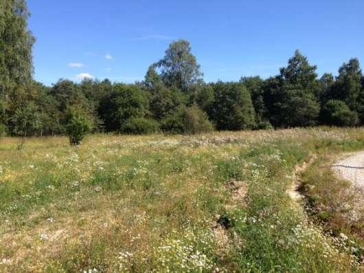 Продается земельный участок 12 соток в ДНП Шиколово, Можайский район,95 км от МКАД по Минскому шоссе. Фото 2