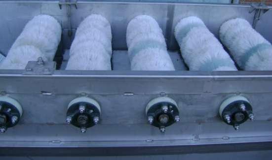 Оборудование моющее огурцы, патиссоны, яблоки.
