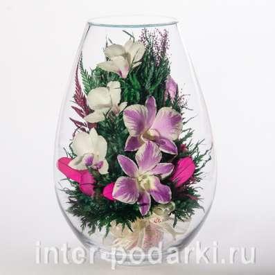 Орхидеи фиолетовые светлые в Москве Фото 4
