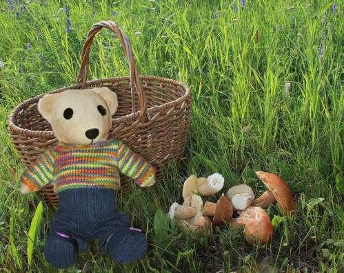Интерьерные мишки в Омске Фото 1