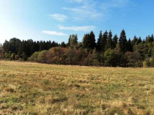 Участок  в большой деревне у леса, 11 соток, д. Новопоречье.